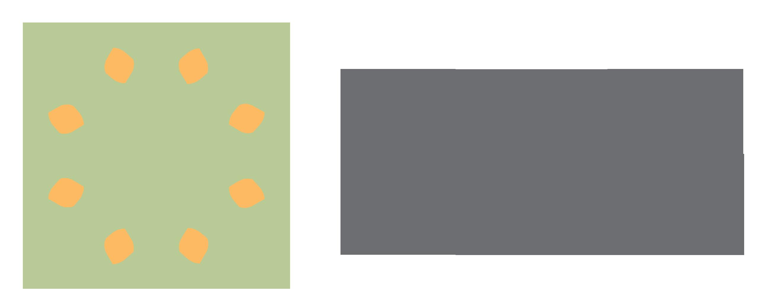 Portland Doula Collective